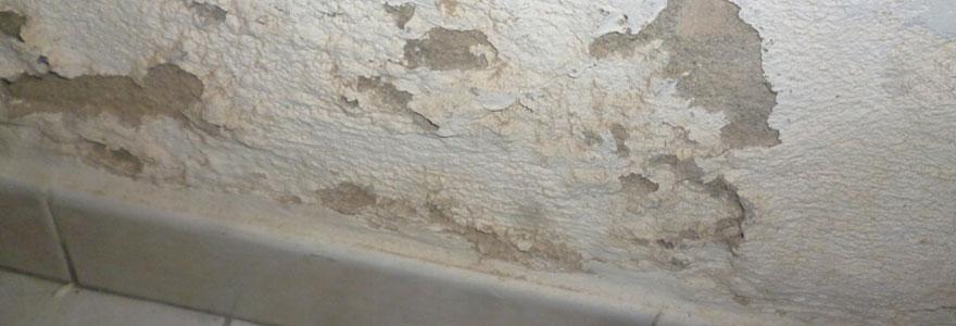 Salpêtre sur les murs